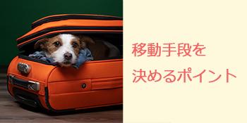 わん旅アドバイス①移動手段を決めるポイント